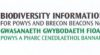 BIS for Powys & Brecon Beacons National Park logo