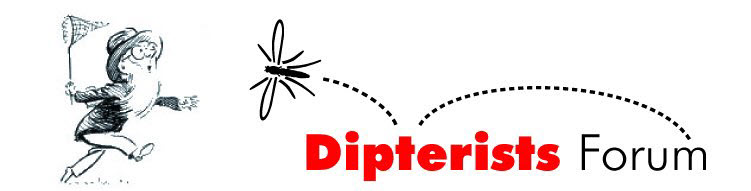 Dipterists Forum logo