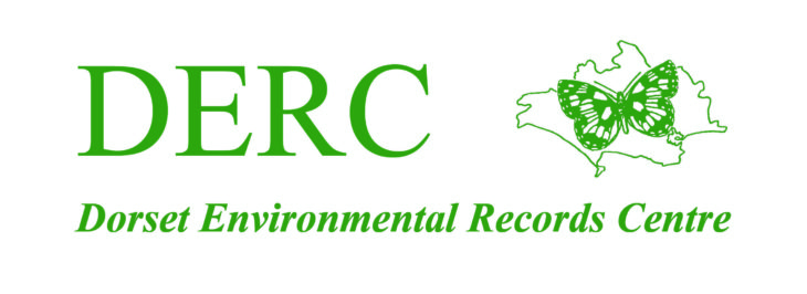 Dorset Environmental Records Centre logo