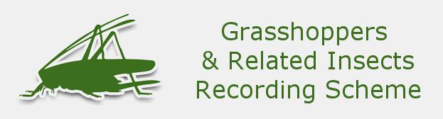 Grasshopper Recording Scheme logo