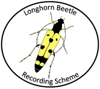 The National Longhorn Beetle Recording Scheme logo