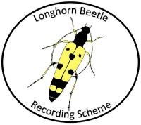 The National Longhorn Beetle Recording Scheme logo