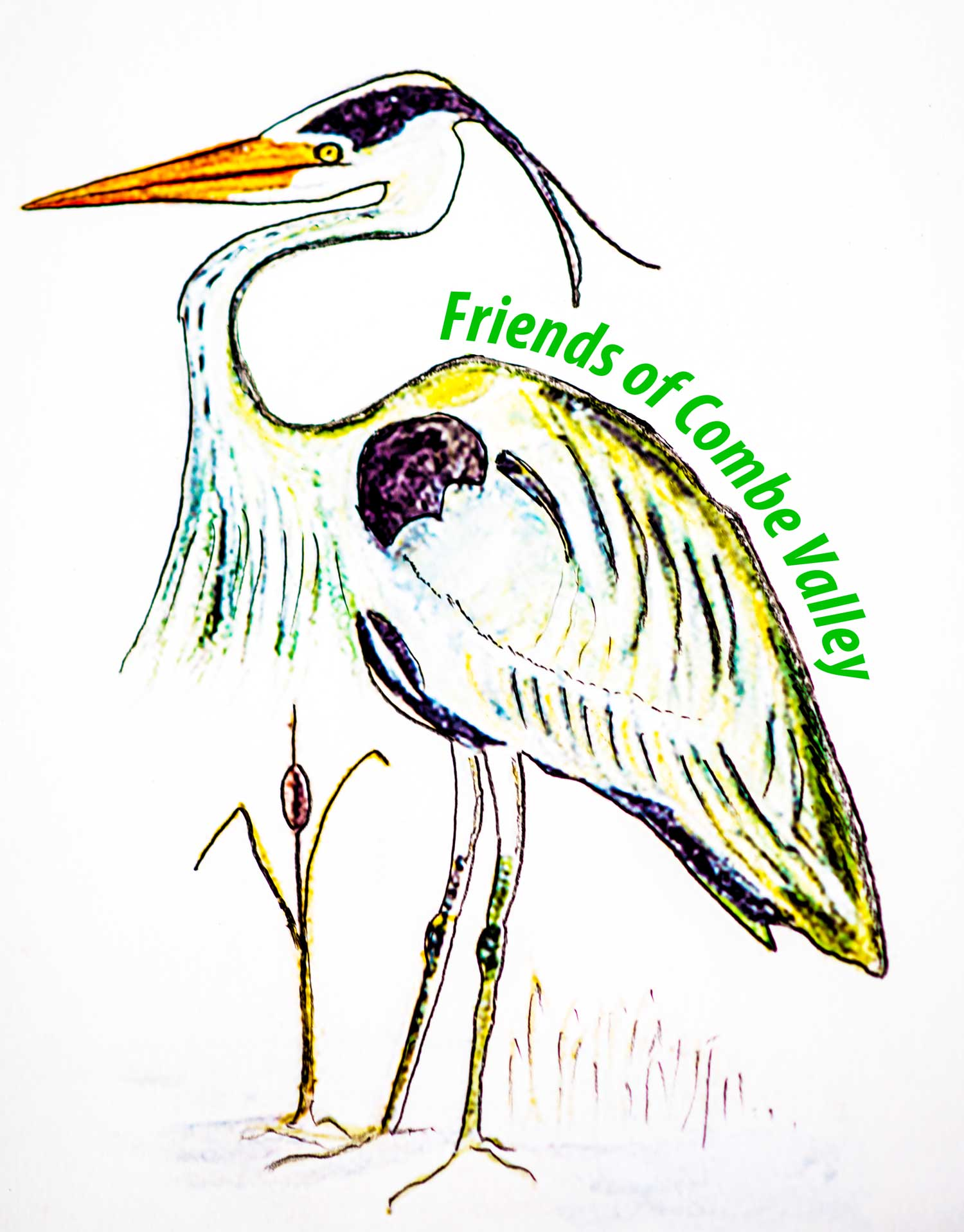 Friends of Combe Valley logo