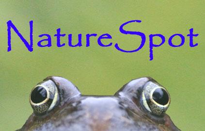 NatureSpot logo