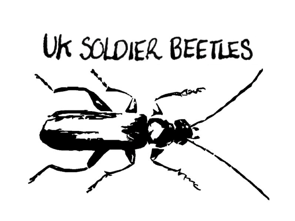 Soldier Beetles and Allies Recording Scheme logo