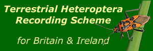 Terrestrial Heteroptera Recording Scheme (Shieldbugs & allied species) logo