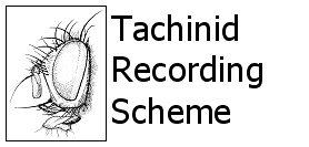 Tachinid Recording Scheme logo