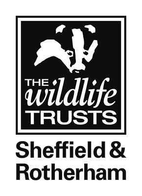 Sheffield and Rotherham Wildlife Trust logo