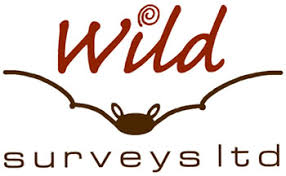 Wild Surveys logo