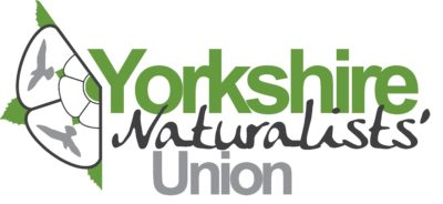 Yorkshire Naturalists' Union logo